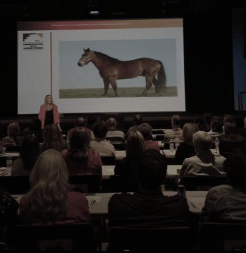 Horsepower Motivational Leadership Keynotes